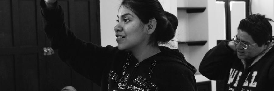 Project Diagnostic for School for Special Education (San Miguel de Allende, México)